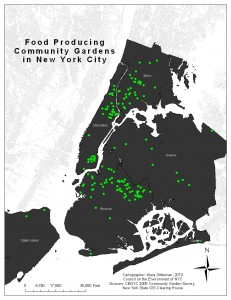 Food-Producing Community Gardens